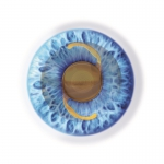 Intraocular lens